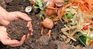 Campaña de compostaje comunitario