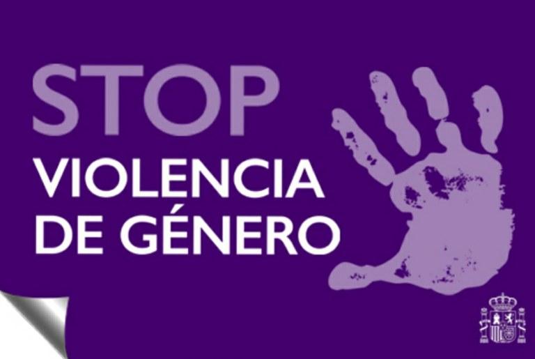 Lucha contra la violencia de género