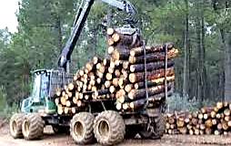 Ordenanza sobre el uso de los caminos rurales